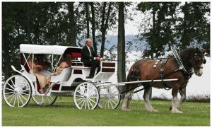 Peterborough Wedding Venue